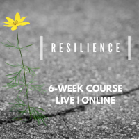 Resilience (6 x 1hr)